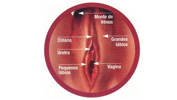 13 Dicas de sexo oral 8